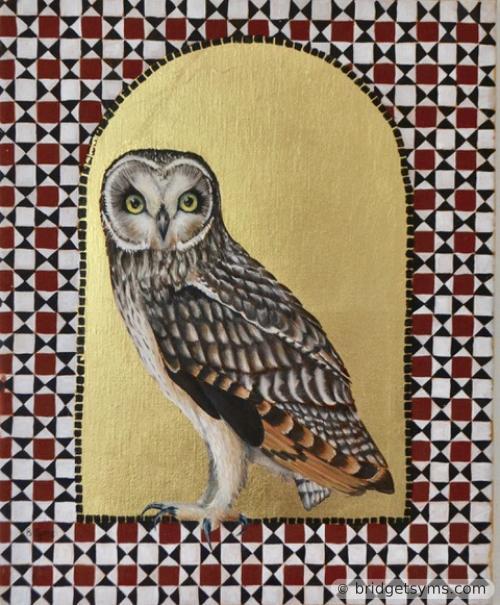 Short eared owl pn gold ground