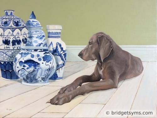 Weimaraner sitting with Chinese floor vases