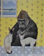 Gorilla cats siamese
